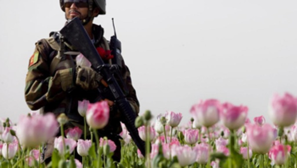 Afghanistan: Attaque des talibans contre la ville de Farah