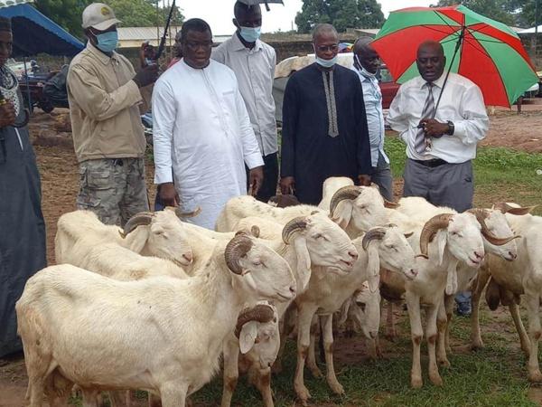 Tabaski : Baldé distrubue des moutons aux imams et à certaines familles de Ziguinchor