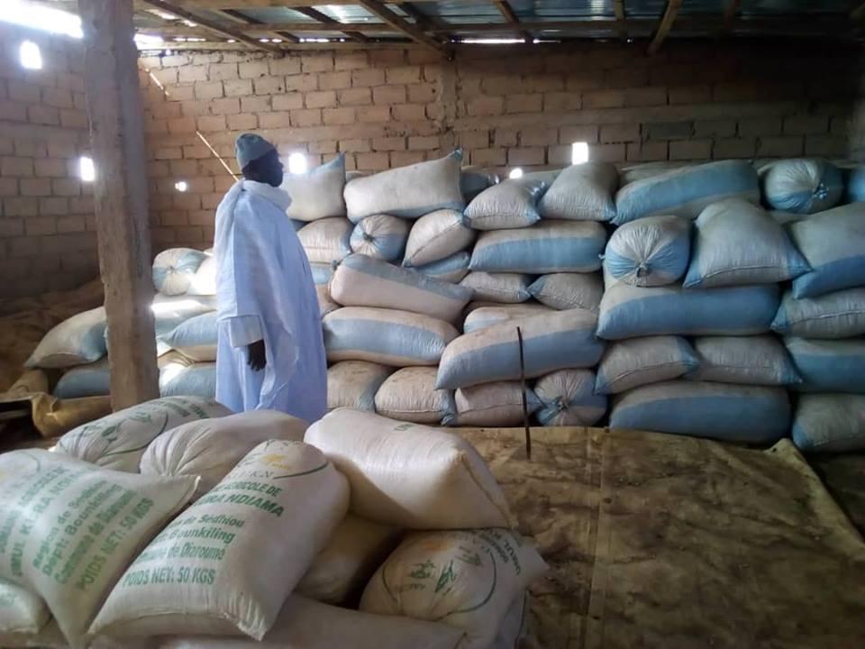 Umoul Qura : El Hadj Sidiya Dramé visite son domaine agricole
