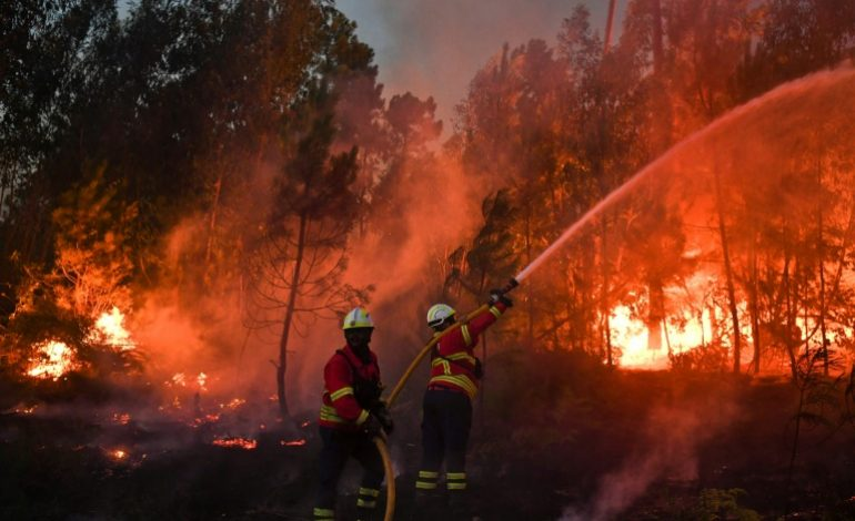 KOLDA : Un incendie ravage tout sur son passage à Bagadadji