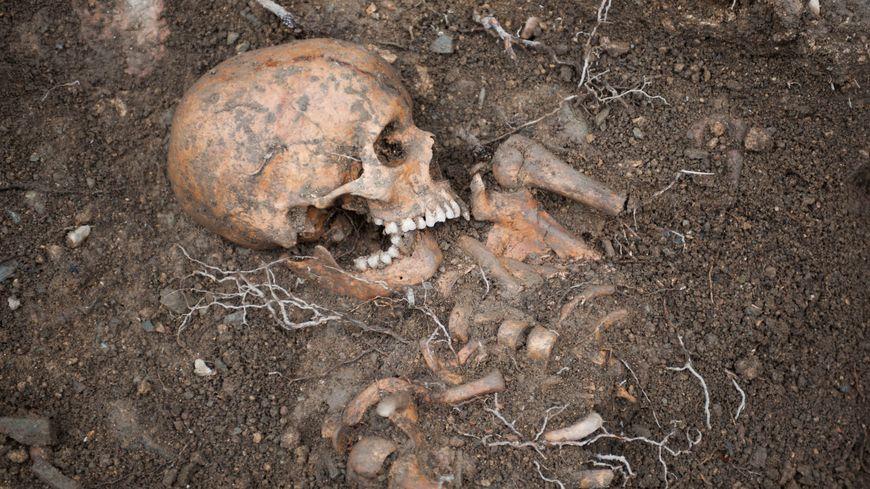 Kolda : Une squelette humain découvert à Saré-Bidji