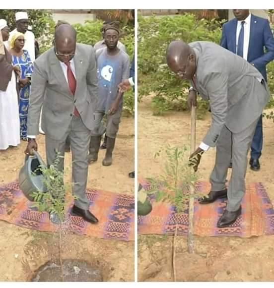 Triste : Regardez comment le ministre de l'environnement célèbre la journée de l'arbre !