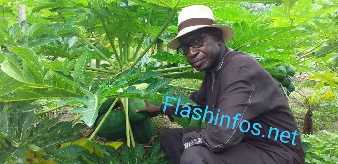 Consommer local : Mamina Kamara montre la voie à Bignona....