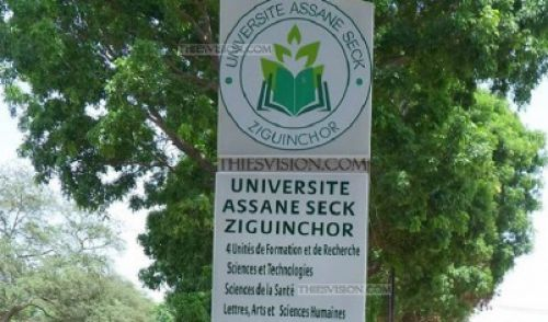 Université Assane Seck de Ziguinchor : Le SAES s'attaque à Cheikh Omar Hann