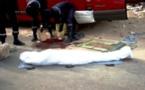 Bambey : Un mort et deux blessés graves dans un accident