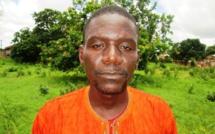 Bignona : Un maire de l'Apr arrêté pour trafic de bois