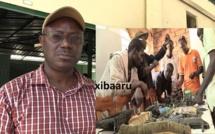 Bignona : Le Maire Keita en mode fast-track accompagne les mécaniciens