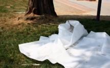 Ziguinchor : Un étudiant de l'université Assane Seck retrouvé mort sous un arbre